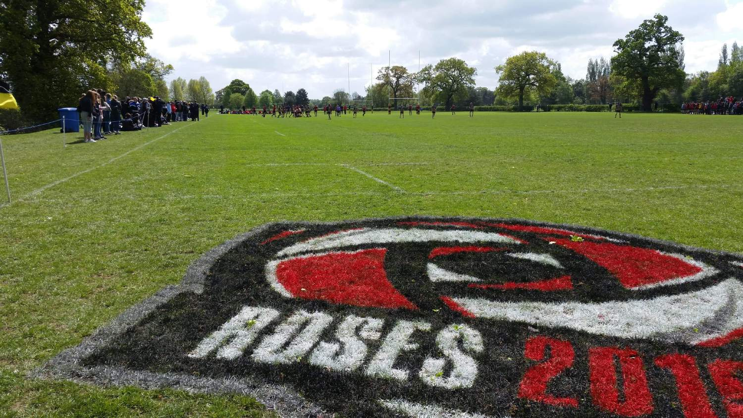 Roses 2019: Saturday Round-Up and Sunday Preview
