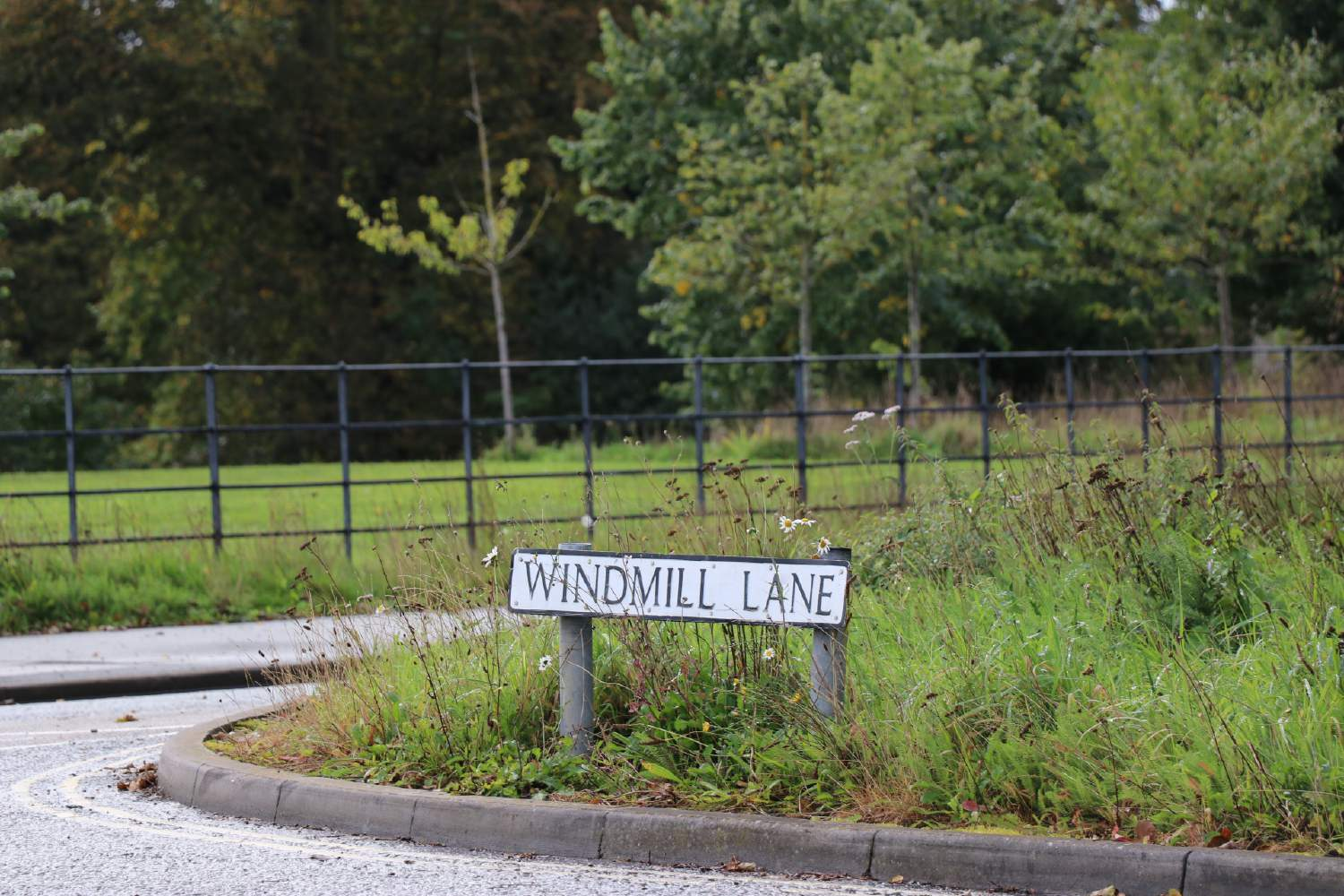Substation plans threaten protected woodland area