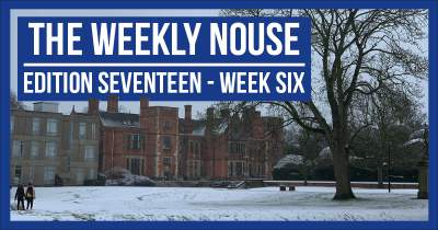 The Weekly Nouse Edition 17