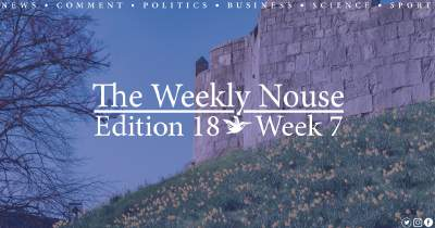 The Weekly Nouse Edition 18